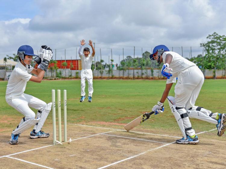 Take pleasure in Cricket World Cup 2011 With Craziness And Pleasure