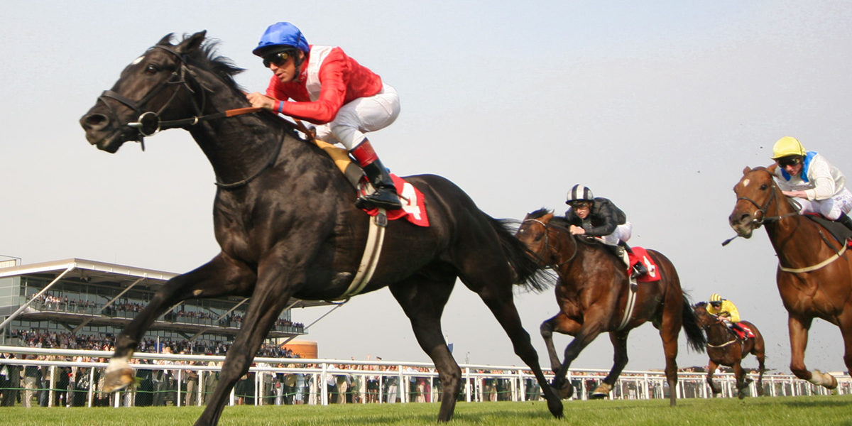 Horse Racing Cash Administration Ideas