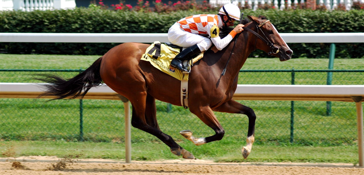 How To Watch A Horse Race To Choose Future Winners For Betting
