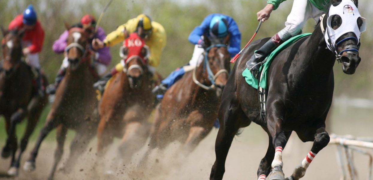 Las Virgenes Stakes Showcases High Thoroughbred Fillies on The Highway to The Kentucky Oaks