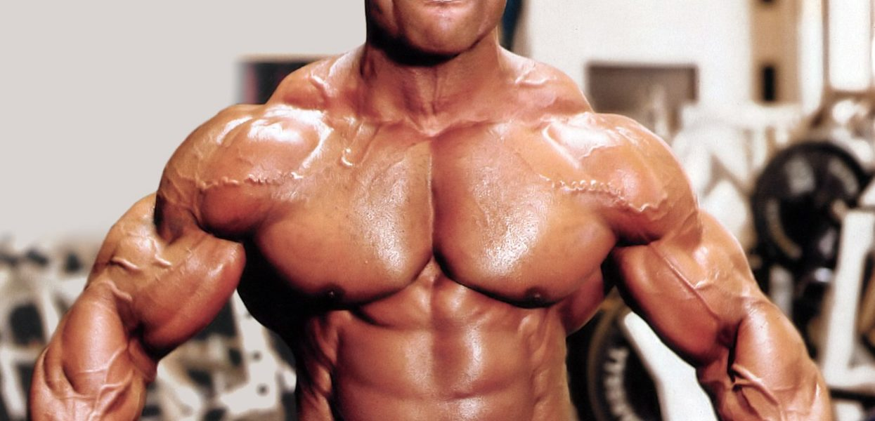 Muscle Organising Reality of The Matter Often Requested Issues