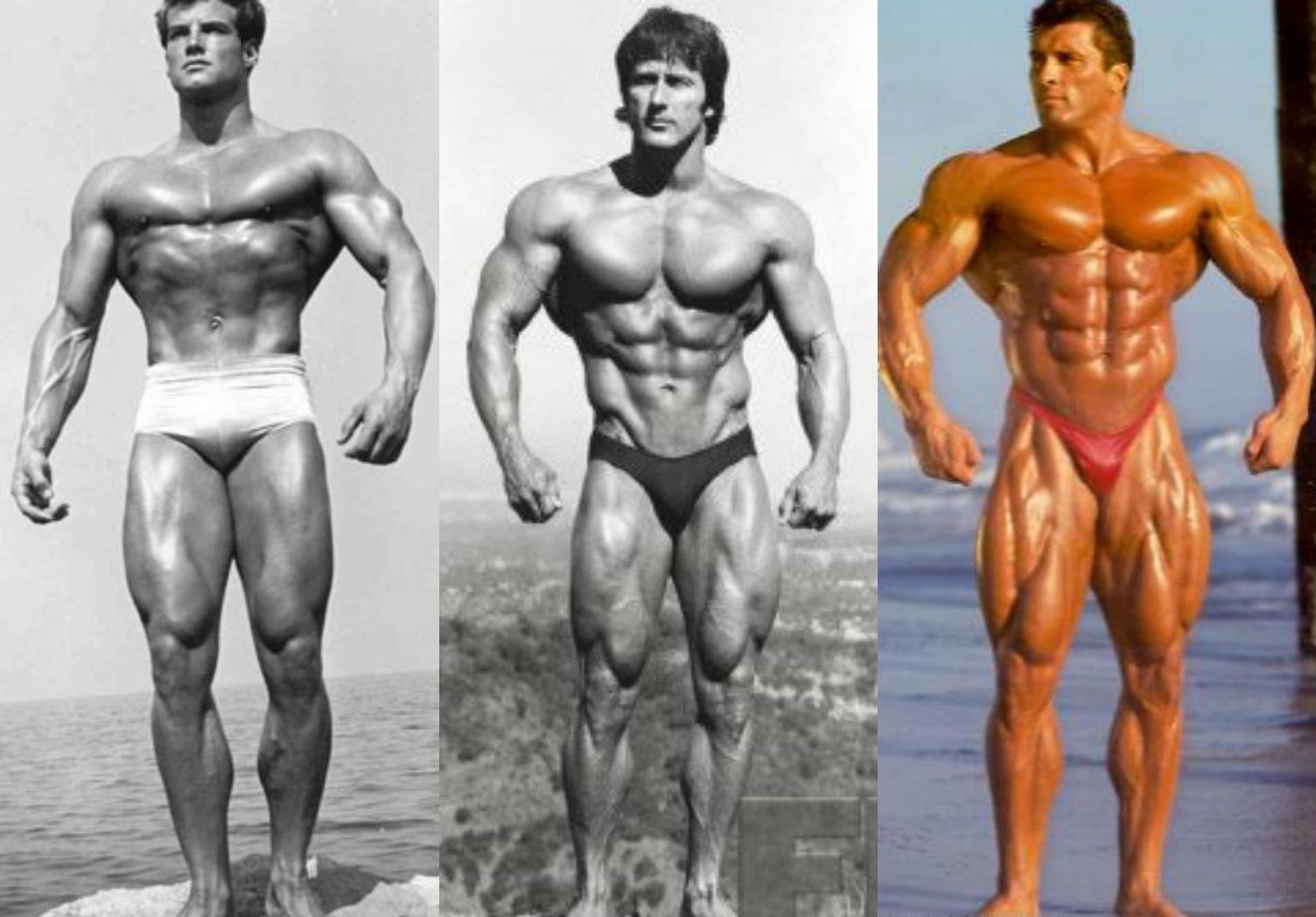 Requirements of Bodybuilding Complement