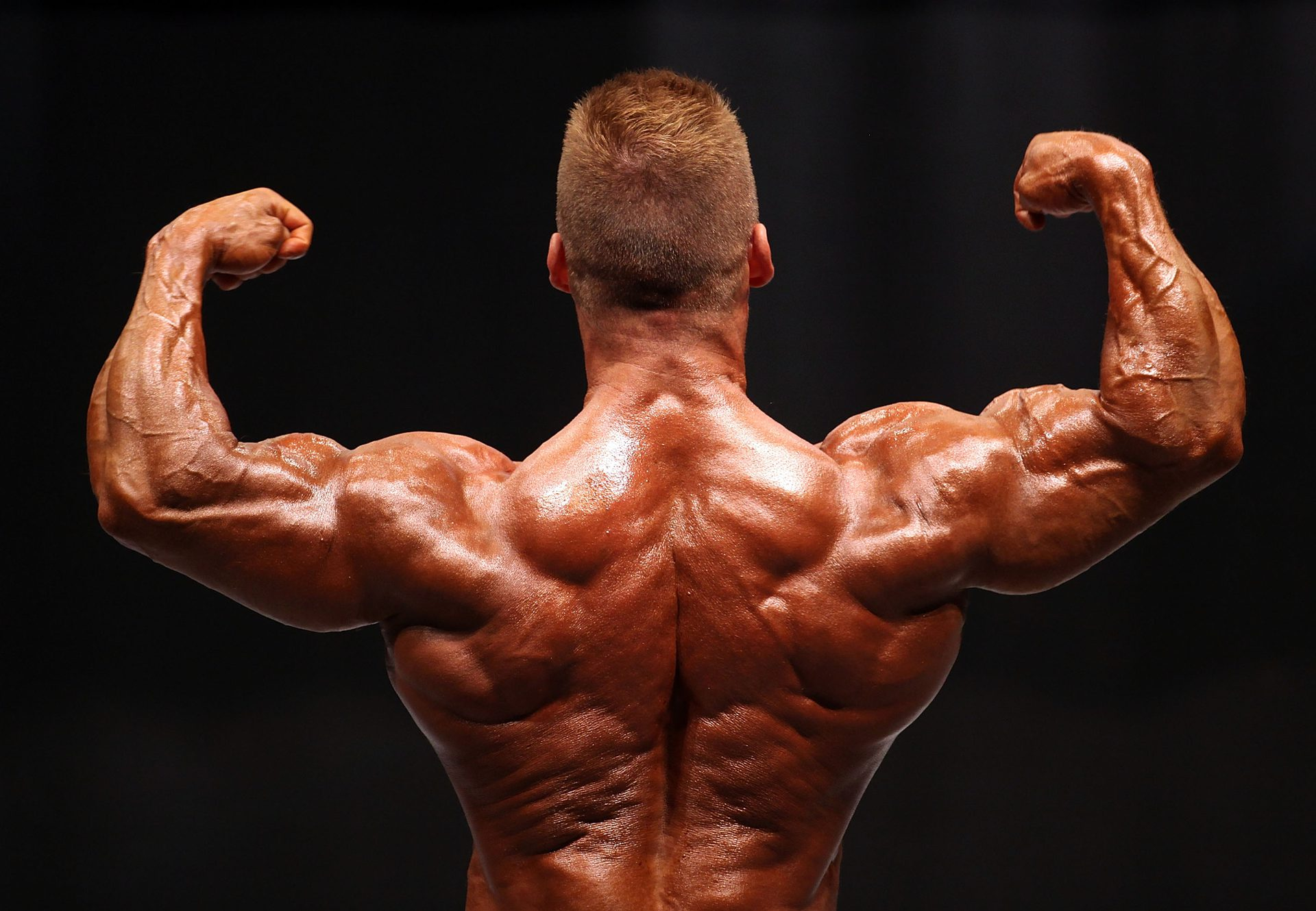 The Use Of Conjugated Linoleic Acid In Bodybuilding Sports activities Actions